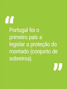 Portugal foi o primeiro país a legislar a proteção do montado.