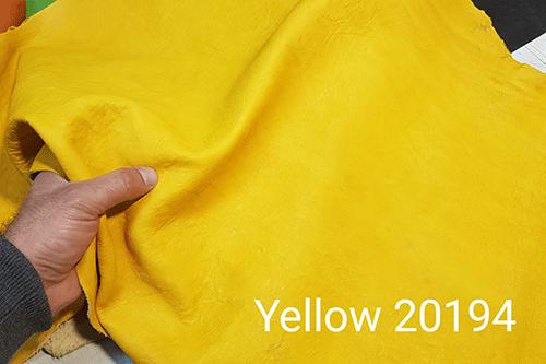 Yellow 20195